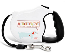 Heart Racing Retractable Dog Leash