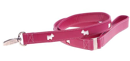matching leather leash