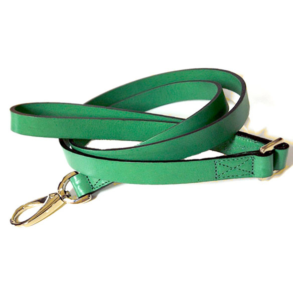 Central Park Leather Dog Leash Kelly Green