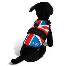 London Calling Dog Harness