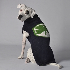 Lucky Clover Wool Dog Sweater