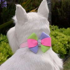 Madison Pinwheel Collar by Susan Lanci