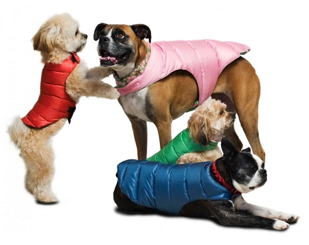 Quilted Reversible Puffer Dog Jacket Dog Coats And