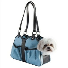 Metro Classic Dog Carrier by PETote - Turquoise