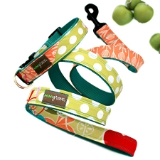 Apple Dog Leash by Mimi Green
