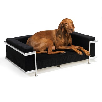 Moderno Dog Bed Silver Frame Black Microvelvet Designer