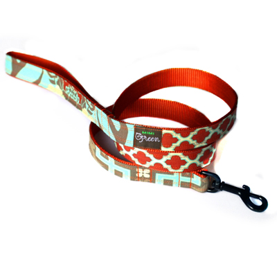 Designer Dog Boutique Collar and Leash Set