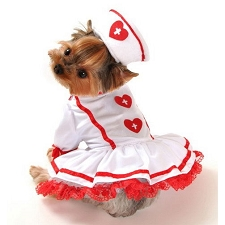 Naughty Nurse Dog Costume
