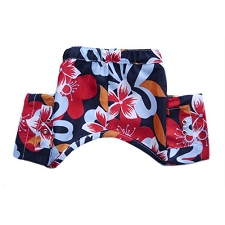 Bahamas Dog Swim Trunks
