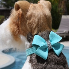 Nouveau Bow Swarovski Crystal Dog Collar - 18 Colors
