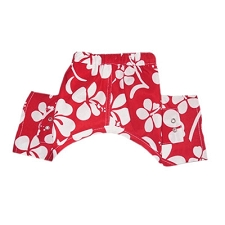 Okinawa Dog Swim Trunks