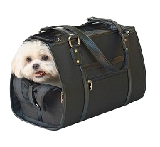 Payton Dog Carrier by PETote - Black