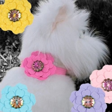 Petal Flower Collar Slider by Susan Lanci- 6 Colors
