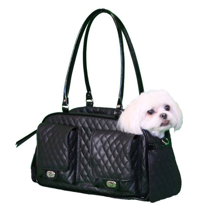 Sandy Hard Case Carrier Bag for Cats and Dogs at zooplus