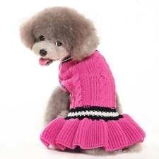 Pink Collegiate Sweater Dog Dress