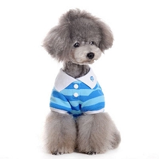 Preppy Polo Dog Shirt - Blue