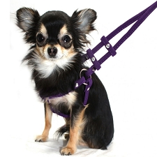 Microsuede Rhinestone Step-In-Harness - Purple