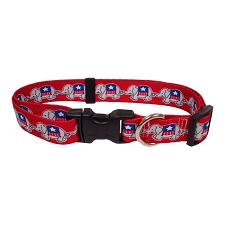 Republican Dog Collar