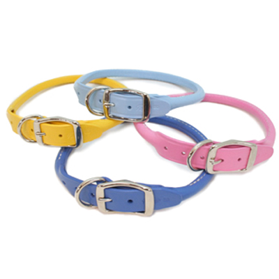 Rolled Leather Dog Collars Spring Colors