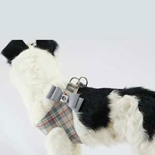 Scotty Plaid Big Bow Step-In Harness- Platinum
