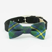 Scotty Plaid Bow Tie Collar- Indigo Forrest