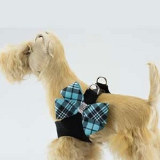 Scotty Plaid Nouveau Bow Step-In Harness- Tiffy Blue