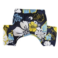 Sebastian Dog Swim Trunks