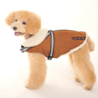 Shearling Reflective Dog Coat at GlamourMutt.com