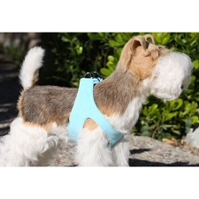 Simplicity Ultrasuede Step-In Dog Harness- Tiffy Blue
