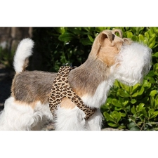 Simplicity Ultrasuede Step-In Dog Harness- Cheetah