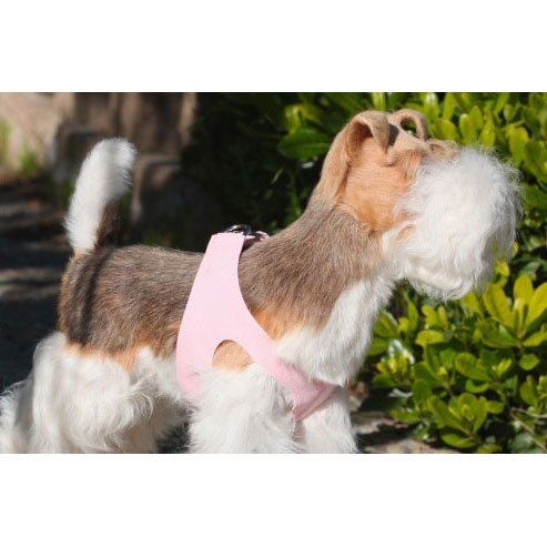 Susan Lanci Simplicity Ultrasuede Step-In Dog Harness- Puppy Pink at