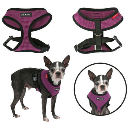 Soft Air-Mesh Dog Harness at GlamourMutt.com