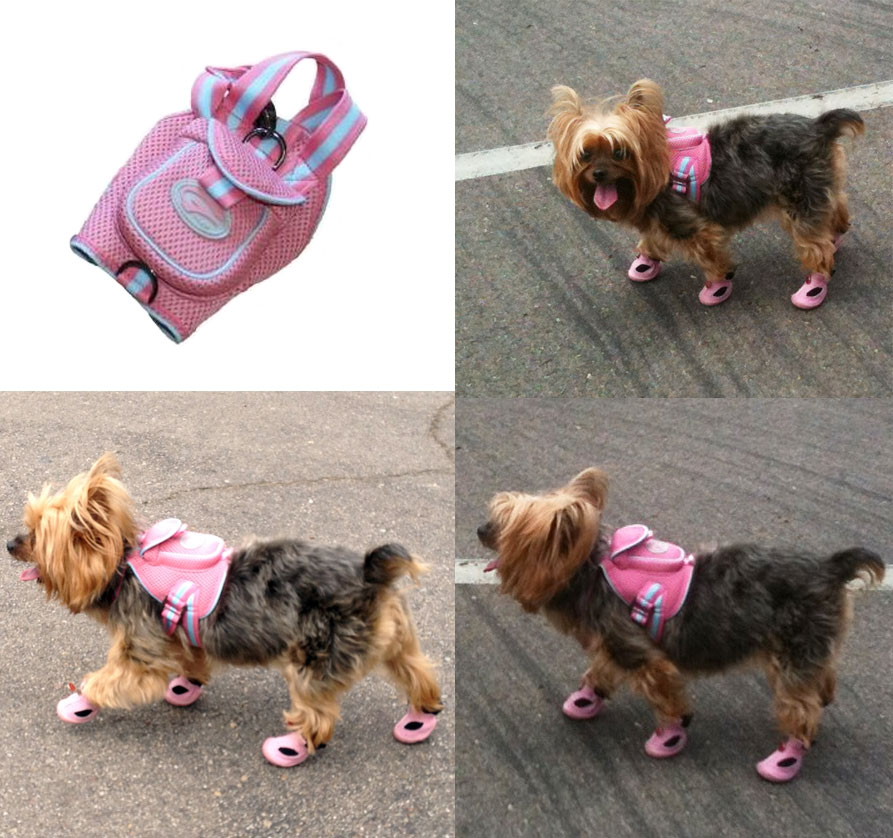 Sporty Mesh Dog Backpack- Pink | Cute Dog Clothes at GlamourMutt.com