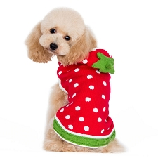 Strawberry Dog Sweater