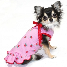 Strawberry Shortcake Pink Dog Dress