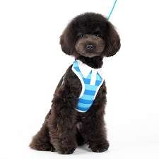 Stripe Polo Harness- Blue