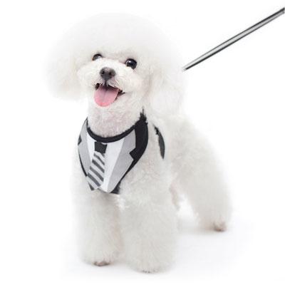 Medium Dog Sweater
