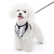 Suit dog harness