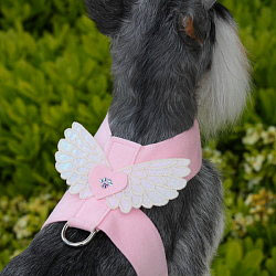 Susan Lanci Angel Wings Dog Harness Designer Dog