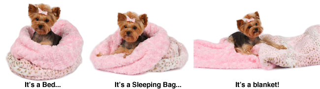 Cute Dog Beds by Susan Lanci