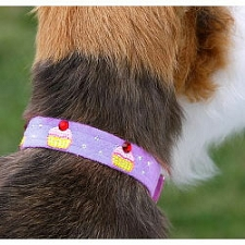 Cupcake Swarovski Crystal Dog Collar - 20 Colors