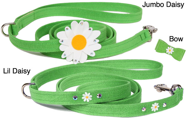 Susan Lanci Designer Dog Daisy Accessories
