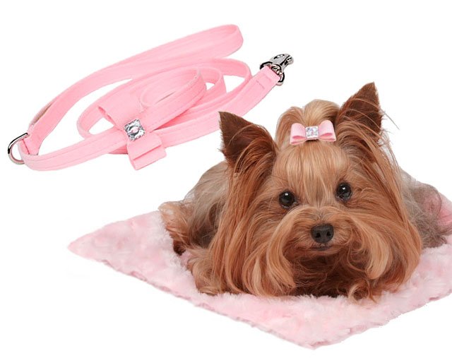 Susan Lanci Dog Boutique Accessories