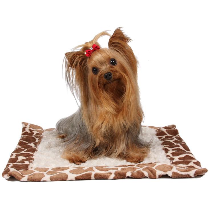 Susan Lanci Designer Dog Blanket Ivory Giraffe Minky At