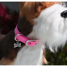 Classic Ultrasuede Dog Collar by Susan Lanci - 30 Colors