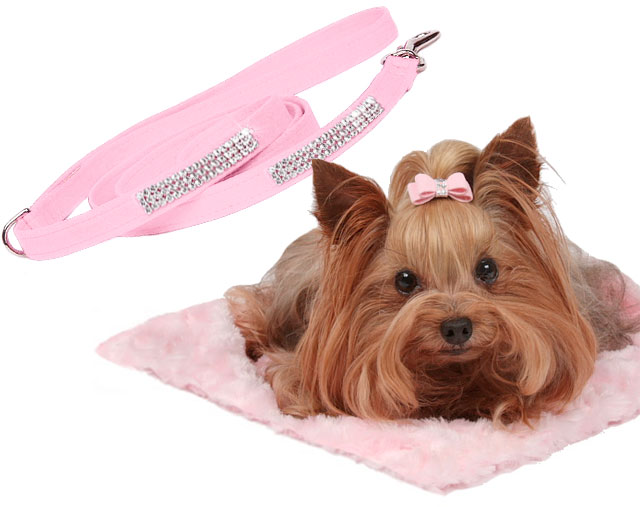 Susan Lanci Designer Dog Accessories