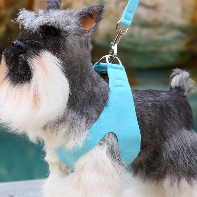 susan lanci plain ultrasuede stepin harness 1002 susan lanci step in dog harness 24 colors at glamourmutt com