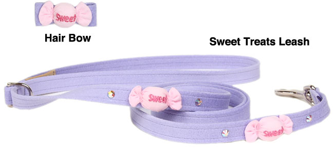 Matching Leash and Hair Bow