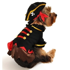 Swashbuckler Dog Costume