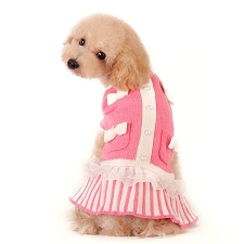 Sweet Lady Sweater Dog Dress